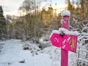 Snowshoeing Tips