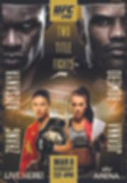 UFC 248 A3 Poster.jpg