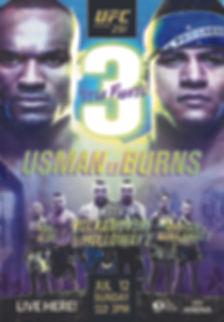 UFC251_A3_Poster.jpg