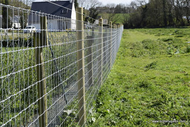 _hamptons_horse_fencing_brittanygates_br