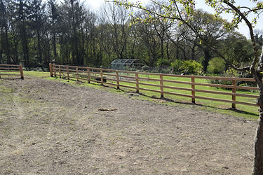 Horse Fencing Post and Rail