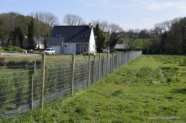 hamptons-horse-fencing.JPG