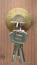 Brass Plate and high security 6 pin lock barrel