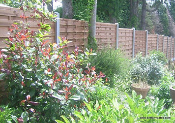 Wooden Fencing with Concrete Posts