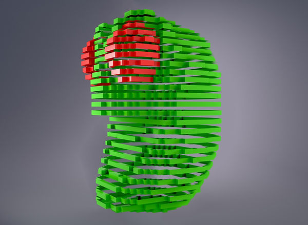 centipede-3d-slices.jpg