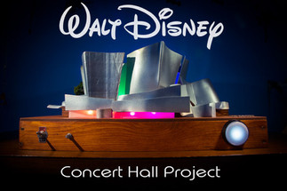 Walt Disney Concert Hall Project