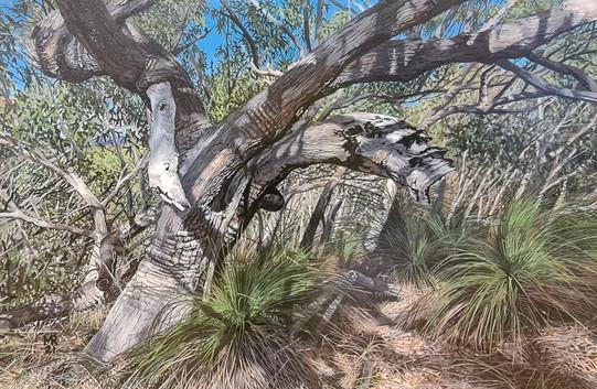 Painting Winner - Marci Russo