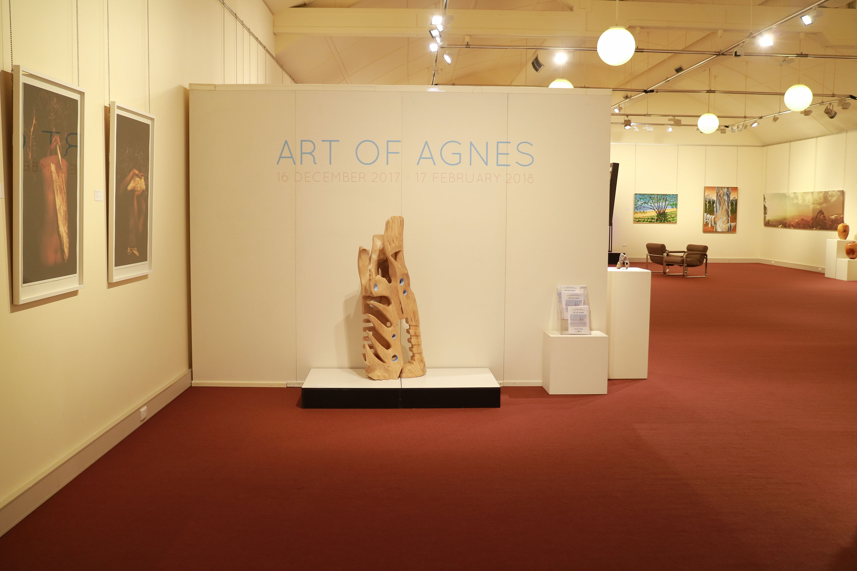 Gladstone Regional Art Gallery & Museum. Photographer E. Korotkaia (2)