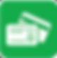 PayNet card icon green
