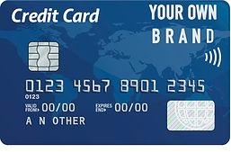 PayNet Credit Card