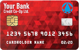 PayNet self-branded card