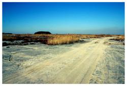 Jebudo island