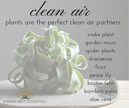 TEH Clean Air.png