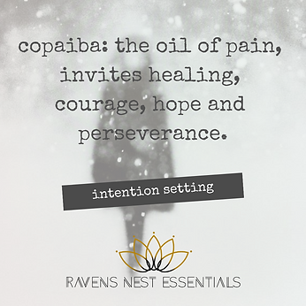 Intention setting copaiba.png