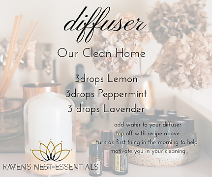TEH clean home diffuser.png