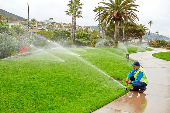 Dragons_landscaping_Irrigation_services.