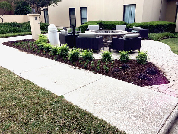 plant-care-co-Landscaping-commercial-design