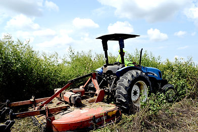 plant-care-co-tractor-mowing-service