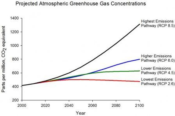 Greenhouse Gas concentration pathways.jp