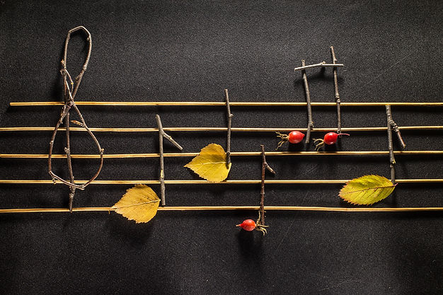 Musical notes conception. Wooden musical notes and leaves..jpg