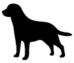 456-4567090_golden-retriever-silhouette-clip-art-at-getdrawings-labrador_edited.png