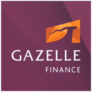 ზოგადი რეკომენდაცია: ბიზნეს მოდელის ცვლილება - Gazelle Finance