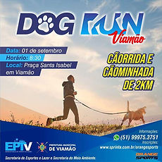 Dog_Run_Viamão.jpeg
