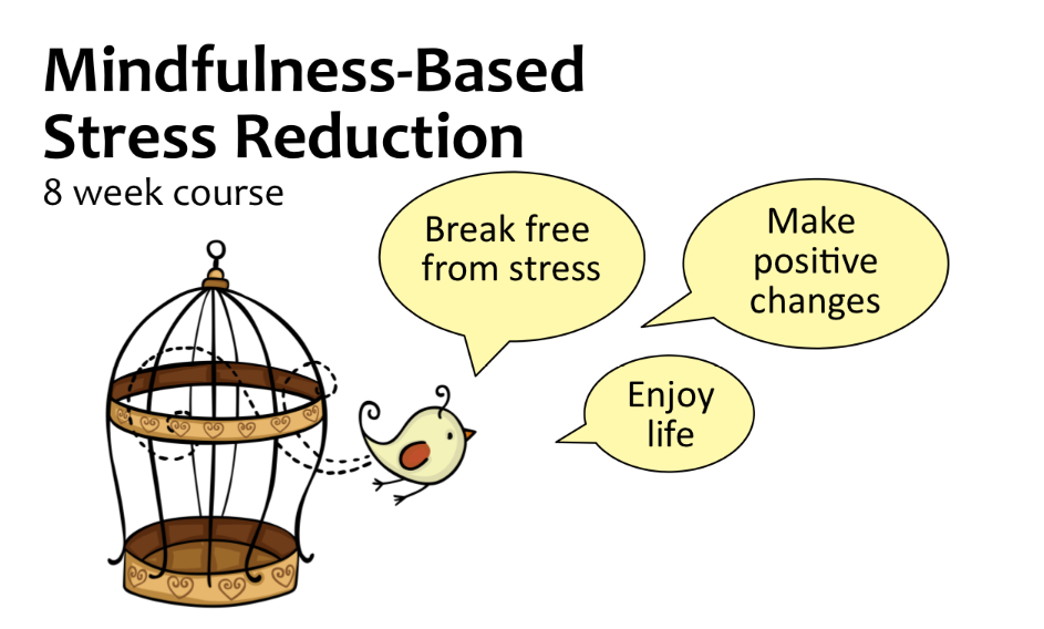 Mindfulness-Based Stress Reduction: bird flying free from a cage