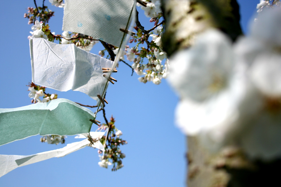 Cotton Bud, 2015, toilet paper installation, Peckham Rye Park