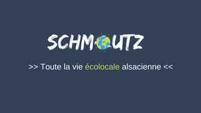 Compostage et recyclage en bicyclette à Strasbourg