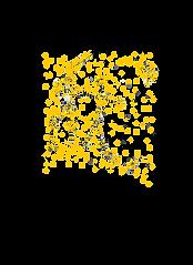 starseed logo.png