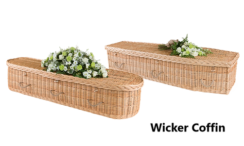 Willow-coffin-shapes.png