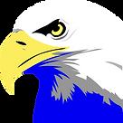 eagle-305514_1280_edited_edited.png