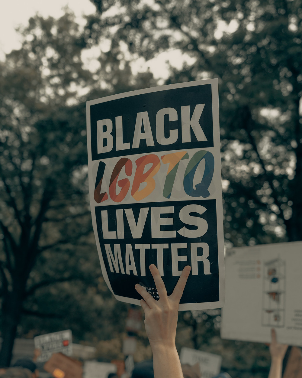 """A white hand holds up a black sign with white block letter writing that says """"Black LGBTQ Lives Matter"""" - the """"LGBTQ"""" is rainbow-colored."""