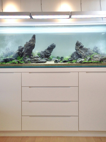 Тумбы для аквариума_10.jpeg