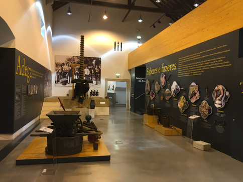 MUSEU DO VINHO E DA VINHA