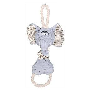 elephant-corde-sonore-.jpg
