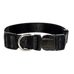collier nylon noir.jpg
