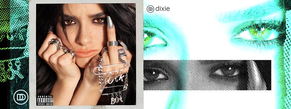 DIXIE_FUCK_BOY_DROP_BANNER_.png