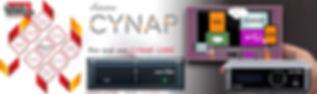 Timeline web PDI Cynap.jpg