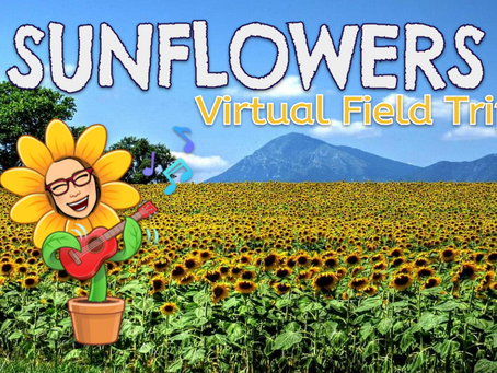 🌻🚍Sunflower Virtual Field Trips