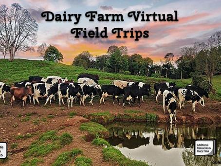 Adopt a Cow 🐄🐮 - Free Virtual Experience & 🚍Virtual Field Trips