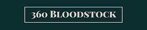 360 Bloodstock - Logo.png