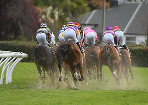 HBay Races NZ-0327.jpg