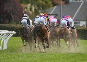 HBay Races NZ-0327.jpg