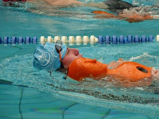 formation bnssa pour devenir nageur sauv