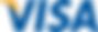 Visa_Inc._logo.svg.png