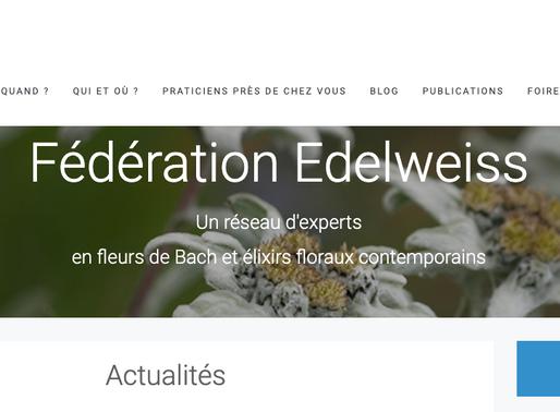 Formation elixirs floraux