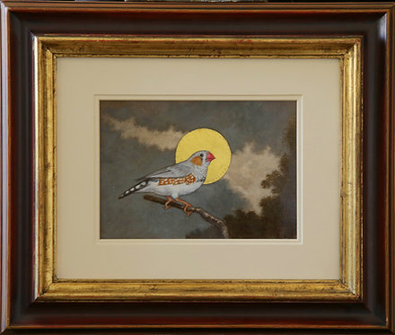 'Birds Of Paradise, Zebra Finch'