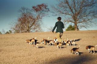 2020-01-05_beagles_a7r3_0484.jpg